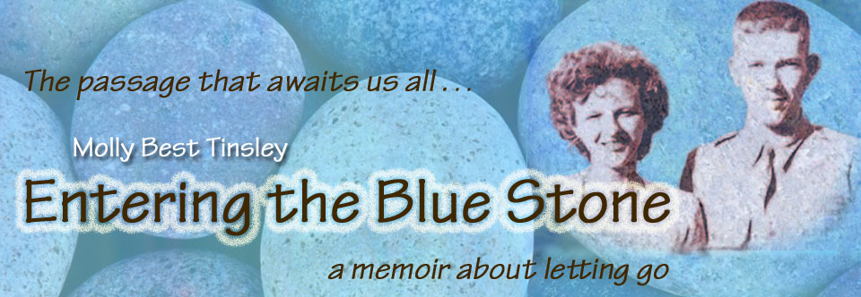 Entering the Blue Stone, by Molly Best Tinsley